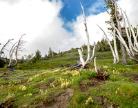 CH140815_Mt.Adams_KillenCreek_143