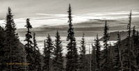 CH140722_OlympicPeninsula_HurricaneRidgeSunrise_032-Edit